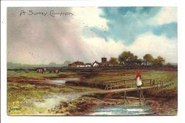 A Surrey Common - Jotter - Pmk Saltash Squared Circle - Surrey