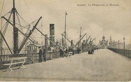 Anvers Antwerp Belgium Le Promenade At L'Escaut Vintage Postcard Z1 - Antwerpen