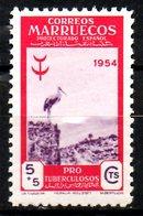MAROC ESPAGNOL. N°458 De 1954. Cigogne. - Picotenazas & Aves Zancudas