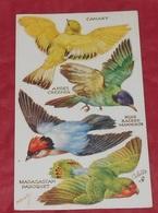 Carte Prédecoupée : M Bowley :: Oiseaux - Animaux ------- 463 - Uccelli