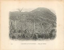 CHILI  CANAUX DE PATAGONIE BAIE DE L'ISTHME  CAMPAGNE DU DUGUAY TROUIN - Chili