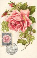 D33912 CARTE MAXIMUM CARD 1957 CZECHOSLOVAKIA - PINK ROSE LIDICE CP VINTAGE ORIGINAL - Rose