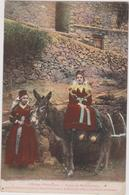 Cpa B14 Près Castillon Et Pontaut D'Ayer-types De Bethmalaises-costumes-âne-l'Ariège Pittoresque - France