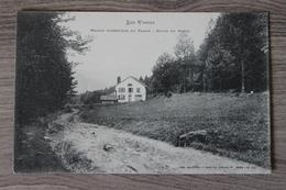 MAISON FORESTIERE DU PALAIS (88) - ROUTE DE HANTZ - Autres Communes