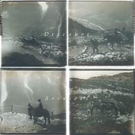 Chamonix Vers 1920 * Ascension à Bel Achat à Dos De Mulet * 4 Plaques Verre Stereo - Voir Scans - Glass Slides