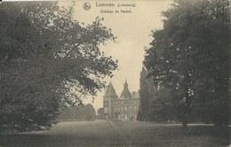 Lummen   -   Château De Hamel  (speldeprikjes) - Lummen