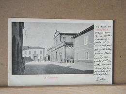 MONDOSORPRESA,  ARGENTA , LA CATTEDRALE  ANIMATA - 1905- VIAGGIATA - Italia