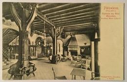 PLATZWIESEN  - VESTIBULE  DES HOTEL DURRNSTEIN - FP - Krems An Der Donau