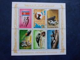 Oiseaux. Dryocopus Richardsi Tristram - Corée Du Nord 1978 - Climbing Birds