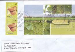 ENVELOPE SOBRE FILATELICO CIRCULEE TO CABA. OBLIT 9 DE JULIO 2015. WINE VINHO STAMP. ARGENTINA.-BLEUP - Oblitérés