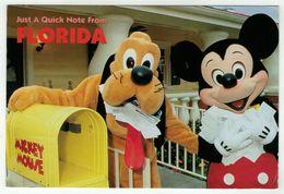 Disney // Florida - Disneyworld