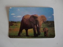 Elephant Elefante Portugal Portuguese Pocket Calendar 1993 - Small : 1991-00