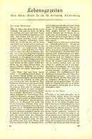 Lebensgezeiten (Von Univ.Prof. Heilpach)  / Artikel, Entnommen Aus Zeitschrift /1936 - Bücher, Zeitschriften, Comics