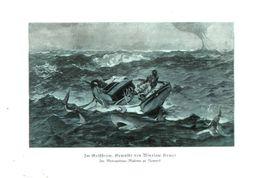 Im Golfstrom (nach Einem Gemälde Von Winslow Homer) / Druck, Entnommen Aus Zeitschrift /1936 - Livres, BD, Revues
