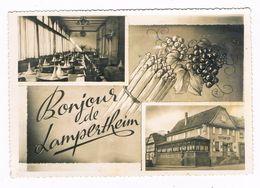 """LAMPERTHEIM  67  Restaurant """" A L'aigle D'or """" Chez Riss .1961 - Andere Gemeenten"""