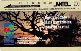 TARJETA TELEFONICA DE URUGUAY, TAMURA, TM28 (299) - Uruguay