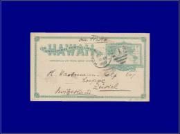 HAWAII Entiers Postaux Yvert:Scott Ux9, Cp 2c. Vert Carte Du Monde, Pour La Suisse      - Qualité: O . Cote: +80 - Hawaii