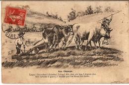 CPA N° 17 - AUX CHAMPS -  Lapin Baluchan Baladin Lucas Aïe Dan Aïe Dan, Bien Animée En 1911 - Teams