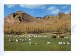 141696 MONGOLIA Bogdyn Gol River Zabhan Aimak Aymaq Old PC - Mongolia
