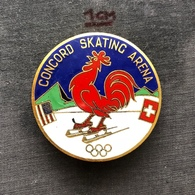 Badge (Pin) ZN006906 - Ice Skating USA Switzerland Concord Skating Arena - Patinaje Artístico