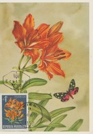 Carte Maximum Fleurs 1966 Lis 1047 - Maximumkarten (MC)