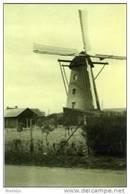 HUNSEL Bij Leudal (Limburg) - Molen/moulin - Verdwenen Bergmolen 'Cornelia' Kort Voor Zijn Verwoesting In 1944 - Nederland
