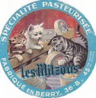 ETIQUETTE FROMAGE  CAMEMBERT -  LES MITZOUS -   Fab En BERRY  -   INDRE  - 36-B - Cheese