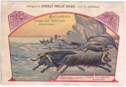 Chromo - Chocolat Poulain Orange - Excursion Dans Les Régions Polaires - Groenland - Chasse Aux Boeufs Musqués - Poulain