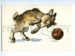 153337 ZOO CIRCUS Goat W/ Ball Old Russian PC - Other