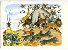 153392 Giant Roach LION & ELEPHANT FOX WOLF By KONASHEVICH Old - Other Illustrators