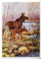 153410 HUNT Elk By Komarov Old Color Russian PC - Other Illustrators