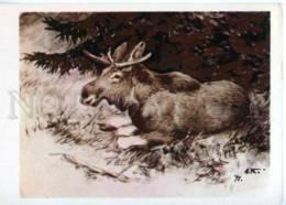 153411 HUNT Elk By Komarov Old Russian PC - Other Illustrators