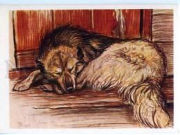 153417 After HUNT Dog By Komarov Old Color Russian PC - Other Illustrators