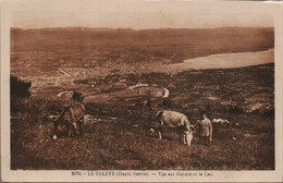La Saleve Vue Sur Geneve Et Le Lac - Autres Communes