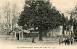 ARBRE(SAINT VINCENT DE PAUL) - Trees