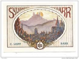Etiquette  De  Vin  D'Alsace  -  Sylvaner   -  C. Leip Barr  (67) - Etiquettes