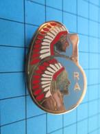 """Superbe Insigne """"pucelle"""" UNITE A IDENTIFIER  Par ARTHUS BERTRAND  Pour EDITIONS ATLAS - Landmacht"""