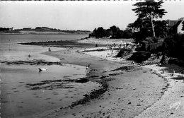 LA TRINITE SUR MER -  Plage Kérino - La Trinite Sur Mer