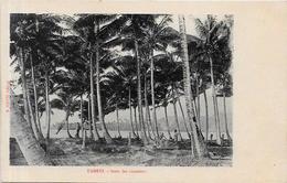 CPA Tahiti  Non Circulé - Tahiti