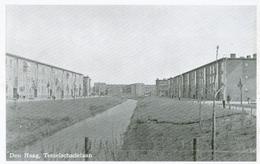 Den Haag; Tesselschadelaan - Niet Gelopen. (J. V.d. Hoek - Den Haag) - Den Haag ('s-Gravenhage)