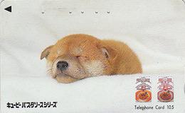 Télécarte Japon / 110-011 - CHIEN Japonais Chiot Shiba - Japanese DOG Japan Phonecard - Hund Telefonkarte - Akita 1247 - Chiens