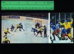 169048 Ice HOCKEY Lundstrom SWEDEN CZECH Holecek Old Card - Postcards