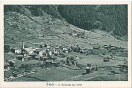 Rabbi - San Bernardo - Trento - HP1344 - Trento