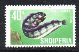 406 - 490 - ALBANIA 1967 , Yvert N. 958  *** MNH Pesci Fish - Albania