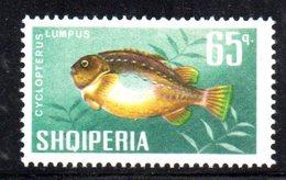 407 - 490 - ALBANIA 1967 , Yvert N. 959  *** MNH Pesci Fish - Albania