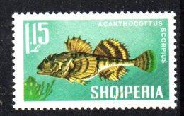 409 - 490 - ALBANIA 1967 , Yvert N. 961  *** MNH Pesci Fish - Albania