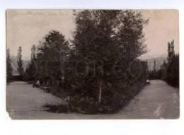 171315 Kyrgyzstan PRZHEVALSK Karakol Garden Vintage PHOTO PC - Kyrgyzstan