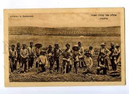 191396 NAMIBIA Jewish Workers In Rechoboth Vintage Postcard - Namibia