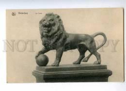 191753 BELGIUM WATERLOO Le Lion Leon Vintage NELS Postcard - Waterloo