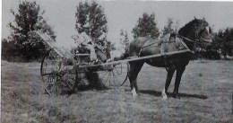 Photo   Agriculture - Métiers
